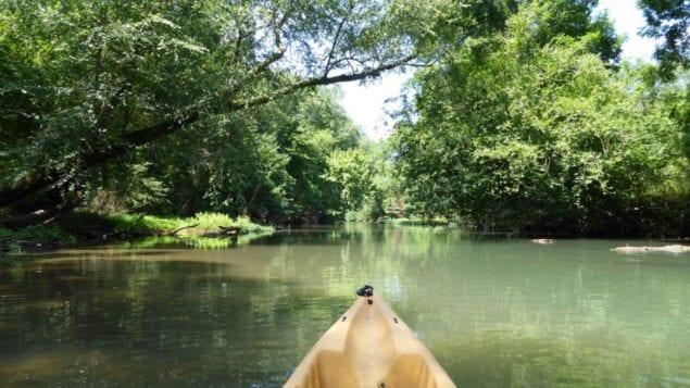 myrtle beach canoeing