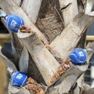 unique wood shelving