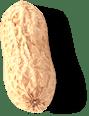an average sized peanut