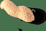 one singular peanut